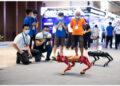 Para pengunjung mengamati robot anjing dan robot lembu pada ajang Konferensi Komputasi Dunia 2021 di Changsha, Provinsi Hunan, China tengah, pada 17 September 2021. (Xinhua/Chen Sihan)