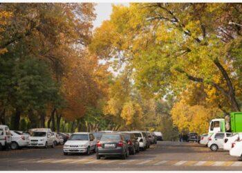 Foto yang diabadikan pada 20 Oktober 2021 ini menunjukkan pemandangan musim gugur di Tashkent, Uzbekistan. (Xinhua/Zafar Khalilov)