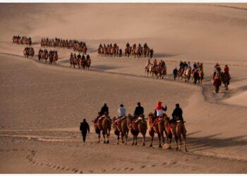 Wisatawan menaiki unta di kawasan wisata Gunung Mingsha dan Mata Air Bulan Sabit saat libur Hari Nasional China di Dunhuang, Provinsi Gansu, China barat laut, pada 3 Oktober 2021. (Xinhua/Zhang Xiaoliang)